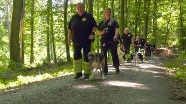 Die Rettungshundestaffel Goldener Grund – Teil 2 Alle Änderungen gespeichert